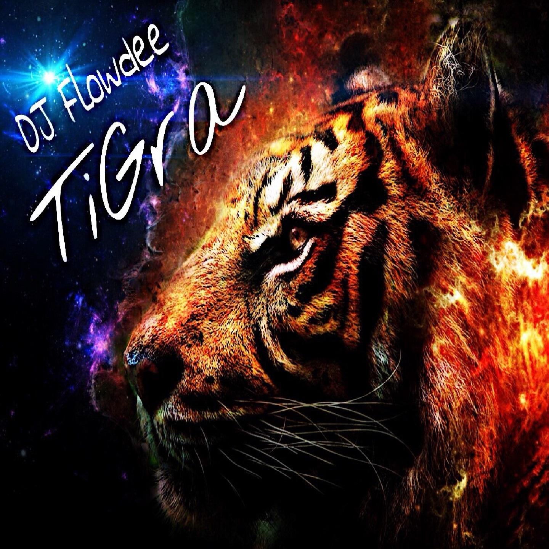 DJ Flowdee - TiGra